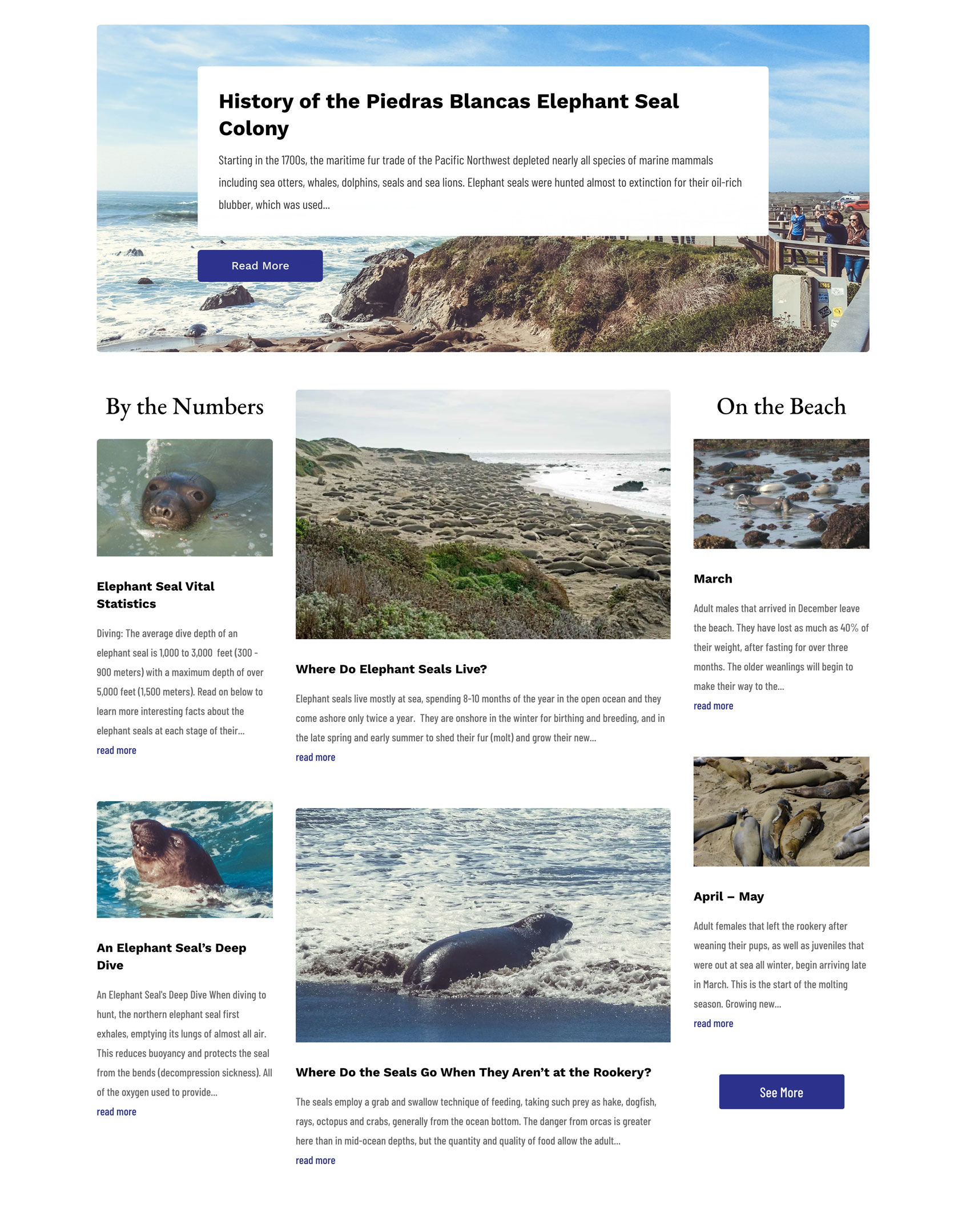 Web Development of ElephantSeal.org