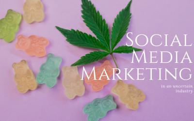 Social Media Marketing: In an uncertain industry.